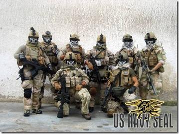 Seal team6